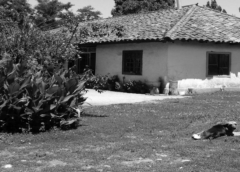 Casa de Esperanza a fines de los años '70.